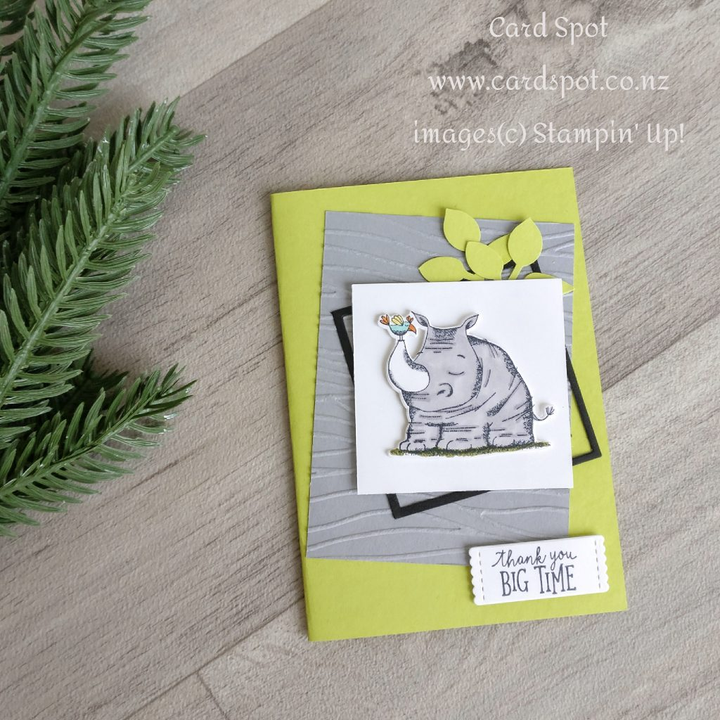 July Card making Class Projects - Animal Outing Frames Card